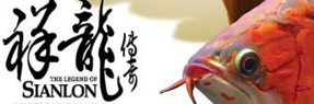 丹阳水族批发市场 丹阳水族馆 丹阳龙鱼